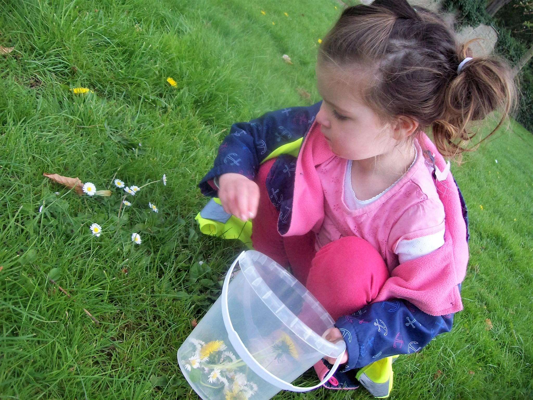 Making daisy chains, April 2017